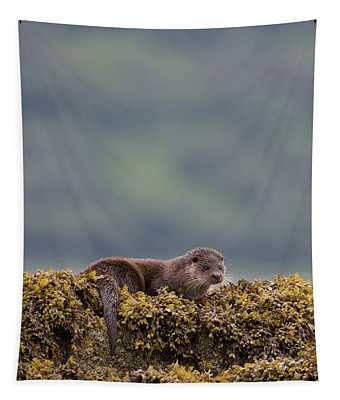 Otter On Seaweed Tapestry