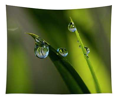 Rain Drops On Grass Tapestry