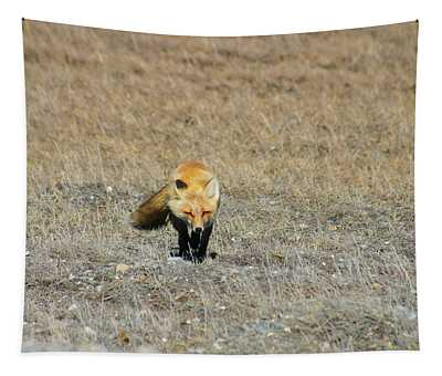 Red Fox On The Tundra Tapestry