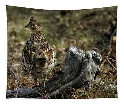 Ruffed Grouse 50701 Tapestry