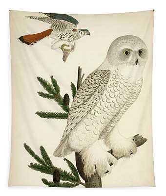 1. Snow Owl. 2. Male Sparrow-hawk. Tapestry