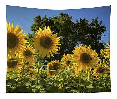 Sunlit Sunflowers Tapestry