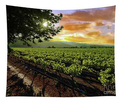 Sunset Over The Vineyard Tapestry