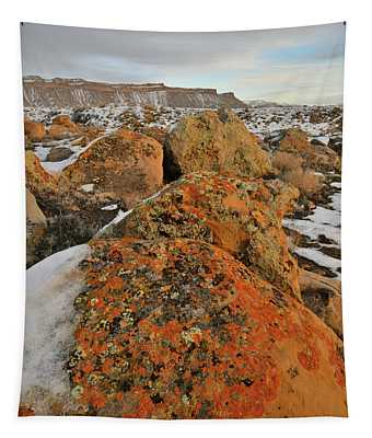 The Colors Of The Book Cliffs Tapestry