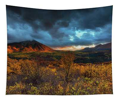 Tapestry featuring the photograph The Last Light by John De Bord
