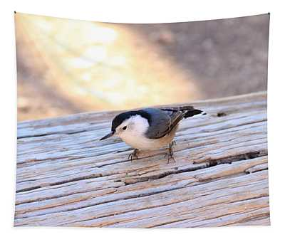 White Breasted Nuthatch Tapestry