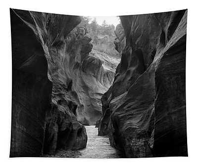 Willis Creek Slot Canyon Utah Winter Tapestry