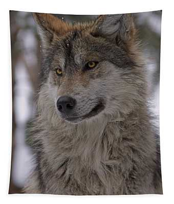 Wolf Tapestry