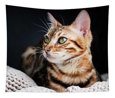 Bengal Cat Portrait Tapestry