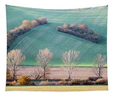 Autumn In South Moravia 2 Tapestry