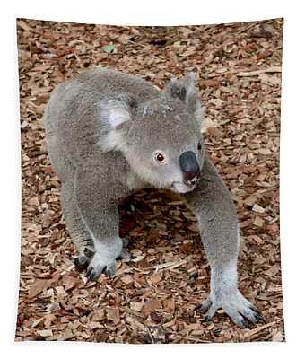 Koala Tapestry
