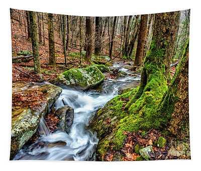 Little Laurel Branch Waterfall Tapestry
