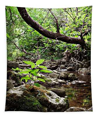 The Bluesy Bubbling Brook Tapestry