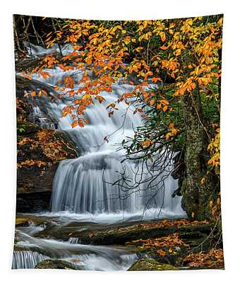 Waterfall And Fall Color Tapestry