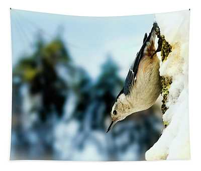 White Breasted Nuthatch In The Snow Tapestry