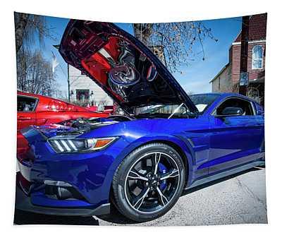 2016 Mustang Tapestry