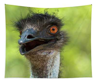 Australian Emu Outdoors Tapestry