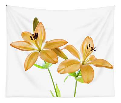 Lilies On A White Background Tapestry
