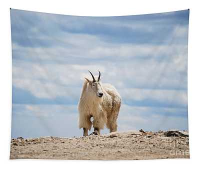 Mountain Goat  Tapestry