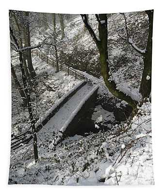 30/01/19  Rivington. Cascade Bridge. Tapestry