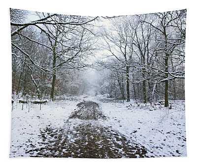 30/01/19  Rivington. Lower Barn. Arboretum Path. Tapestry