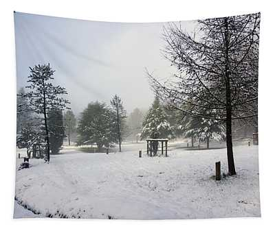 30/01/19  Rivington. Memorial Arboretum. Tapestry