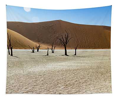 Deadvlei Tapestry