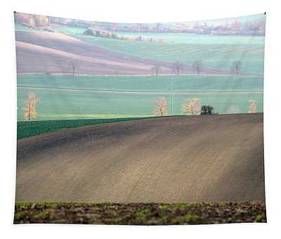 Autumn In Moravia 5 Tapestry
