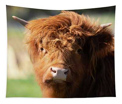 Highland Cow On The Farm Tapestry