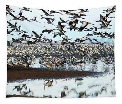 Sunrise Over The Hula Valley Tapestry