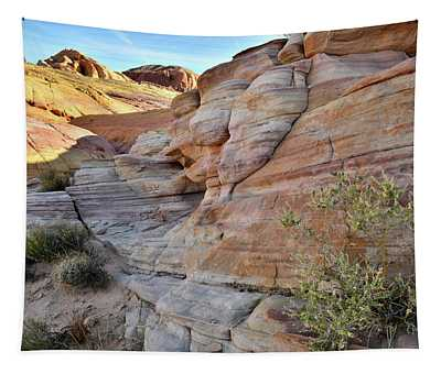 The Colorful Sandstone Of Valley Of Fire Tapestry