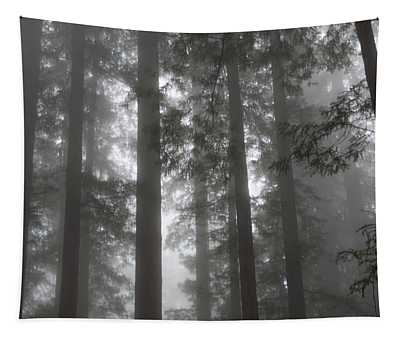 5 Fern Grove Fog N. California Tapestry