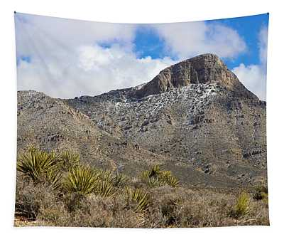 Red Rock Canyon Tapestry