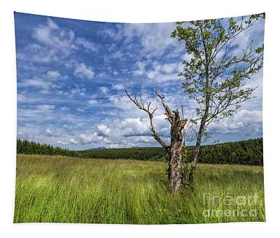 The Harz National Park Tapestry