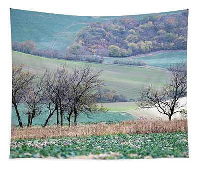 Autumn In Moravia 8 Tapestry
