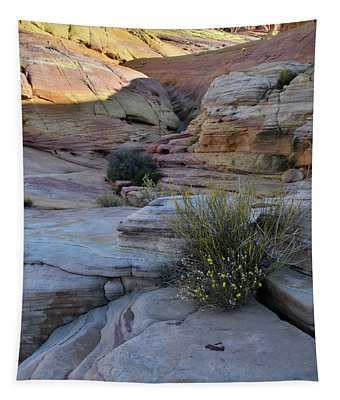 Entrance To Pastel Canyon In Valley Of Fire Tapestry