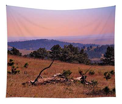 Autumn Day At Custer State Park South Dakota Tapestry