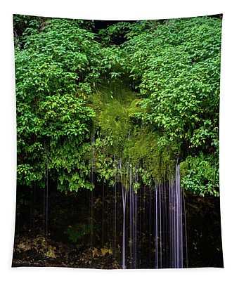 A Hidden Gem Tapestry