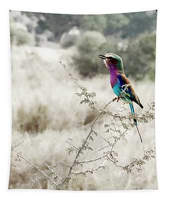 A Lilac Breasted Roller Sings, Desaturated Tapestry