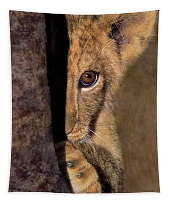 A Lion Cub Plays Hide And Seek Wildlife Rescue Tapestry