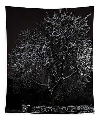Tapestry featuring the photograph A Lonely Bench by Jaroslaw Blaminsky