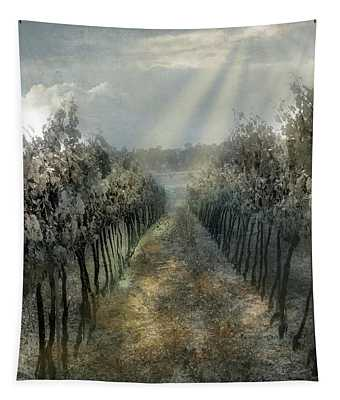 A Mexican Vineyard Tapestry