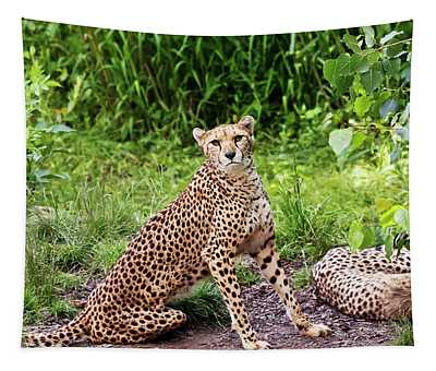 A Pair Of Cheetahs In The Jungle Tapestry