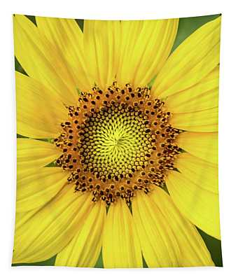 A Perfect Sunflower Tapestry