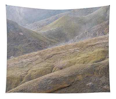 A Poetic Gauze Tapestry by Alexander Kunz