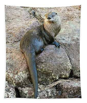 A River Otter Dries Out On A Rock Tapestry