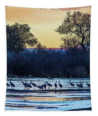 A Sandhill Sunset Tapestry