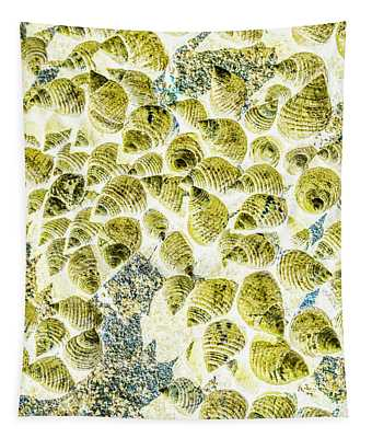 A Seashell Abstract Tapestry