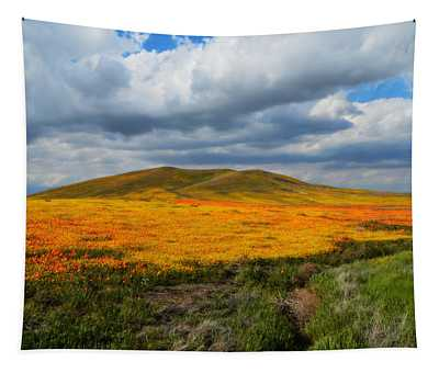 A Valley Of Beauty Tapestry