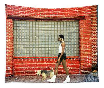 A Young Man Walking His Dog Tapestry